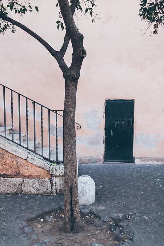 Wall & Background by Tommaso Tuzj for Stocksy United