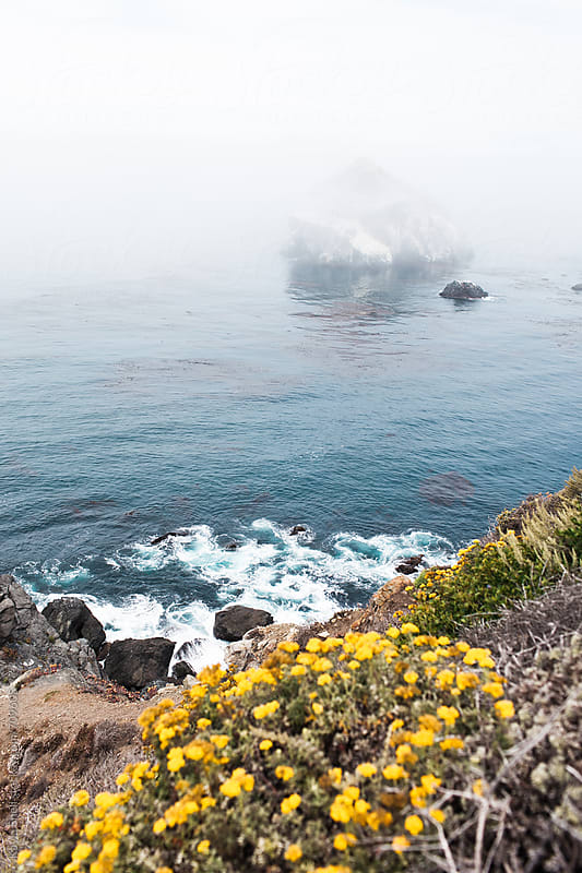 Big Sur Road Trip by Kayla Snell for Stocksy United