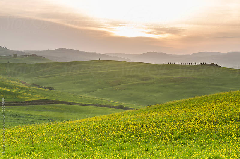 Tuscany fields at sunrise by Marilar Irastorza for Stocksy United
