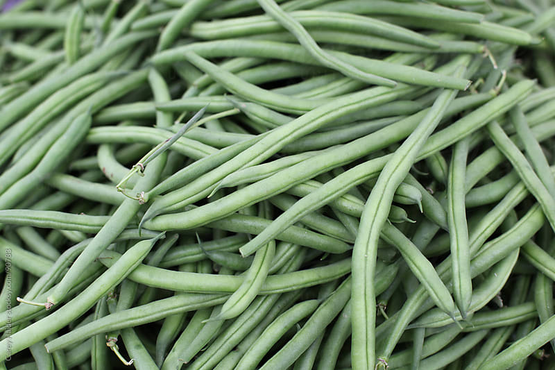 Fresh Green Beans From A Garden by Carey Haider for Stocksy United