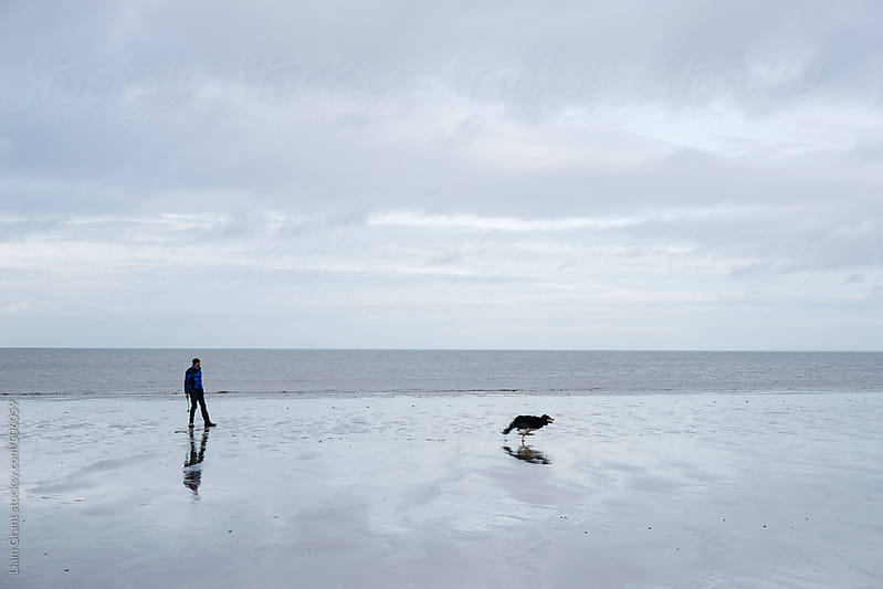 Dog owner playing ball on the beach with his Border Collie at low tide. by Liam Grant for Stocksy United