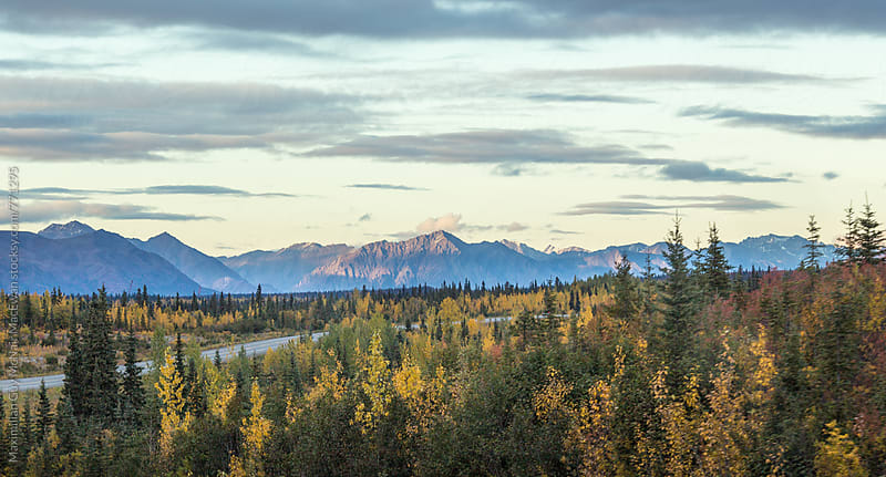 Sunset over the mountains and forests of Denali, Alaska by Maximilian Guy McNair MacEwan for Stocksy United