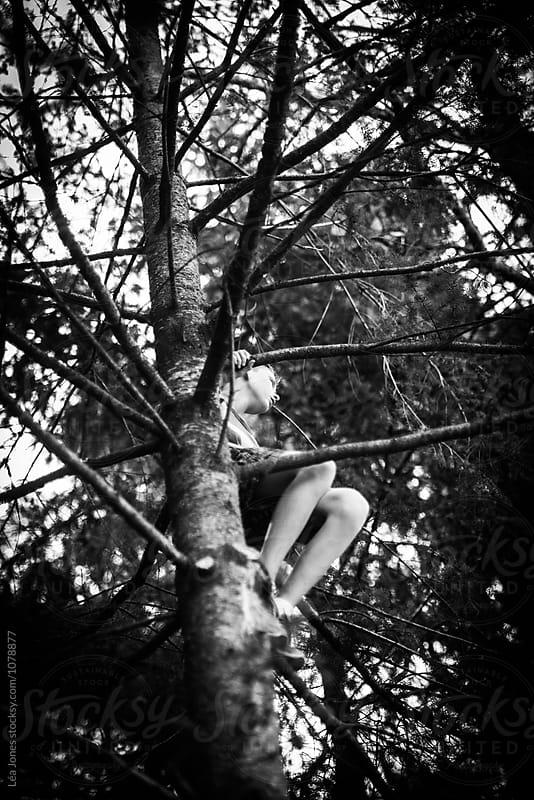 teen climbing a tree by Léa Jones for Stocksy United