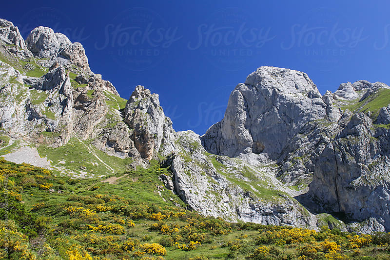 Picos de Europa, Spain by Luca Pierro for Stocksy United
