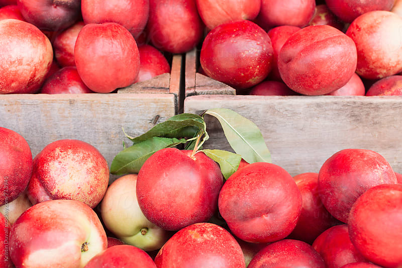Whole fresh white nectarines at market by Kristin Duvall for Stocksy United