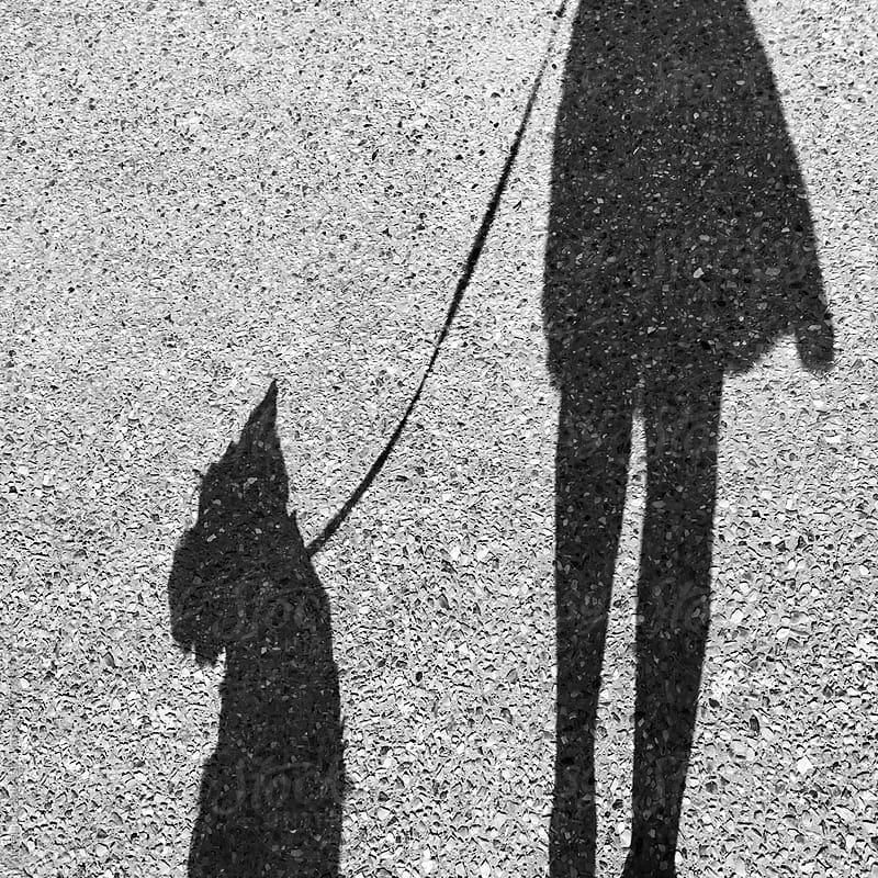 Shadow of a woman walking her dog by Angela Lumsden for Stocksy United