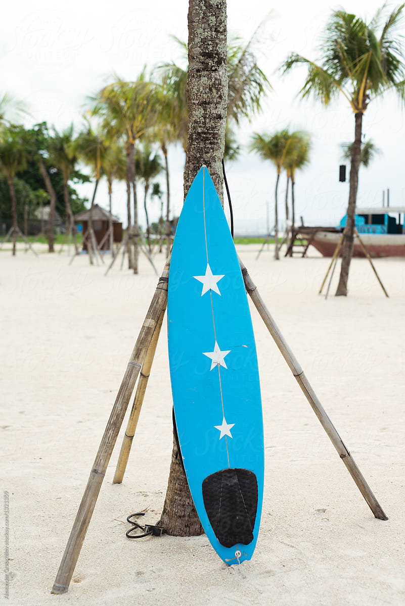 blue surfboard leaning against palm tree on a beach stocksy united