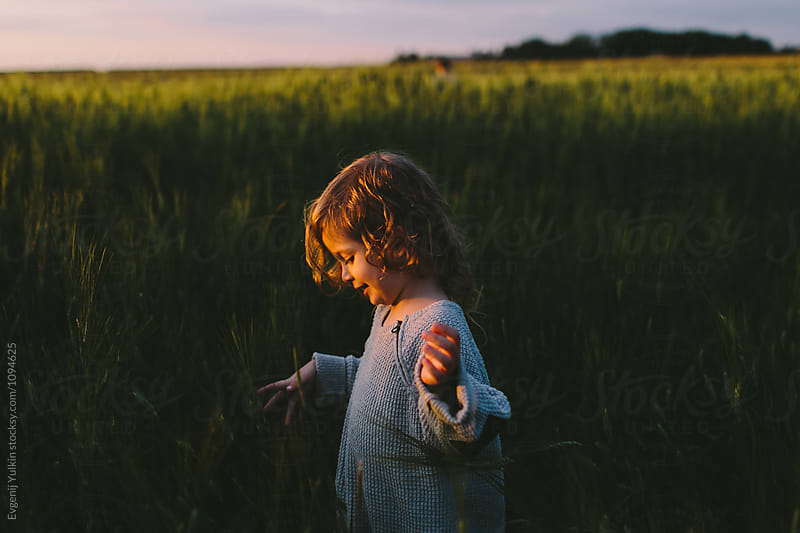 Curly little boy walking through the barley field  by Evgenij Yulkin for Stocksy United