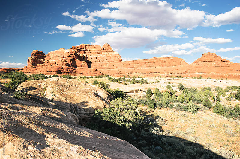 Panorama of standstone canyons in Needles district of Canyonland by Peter Wey for Stocksy United