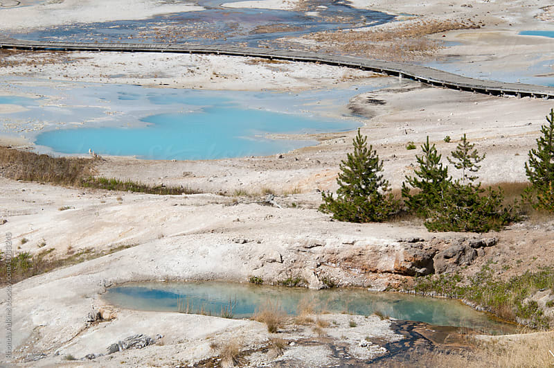Yellowstone Geothermal hotspring by Rhonda Adkins for Stocksy United