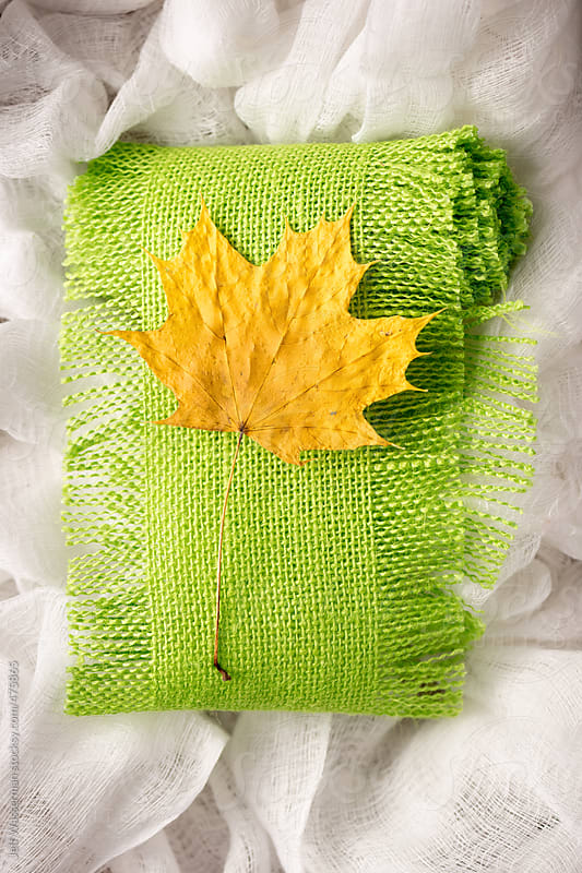 Dried Fall Leaf  by Studio Six for Stocksy United