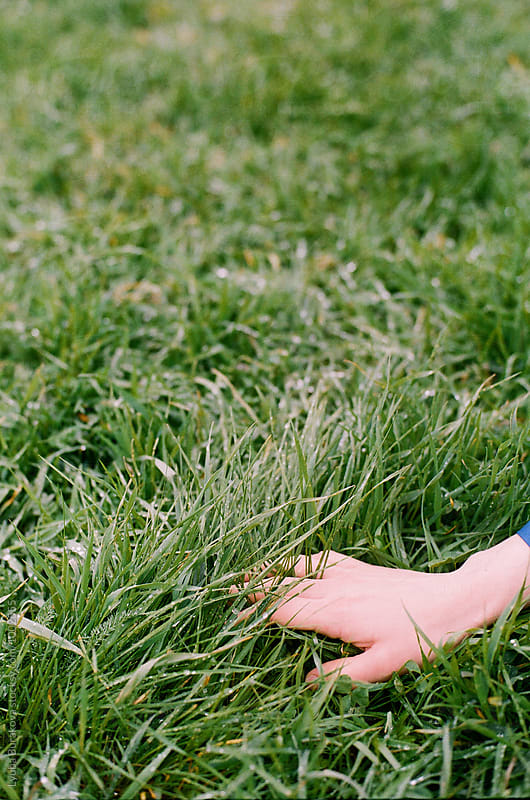 Hands in the grass with dew by Lyuba Burakova for Stocksy United