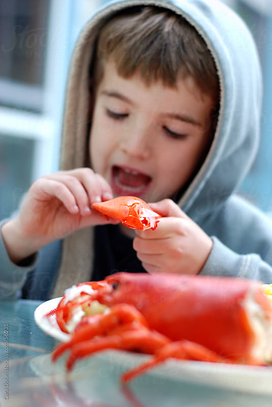 Boy eats a lobster by Cara Slifka for Stocksy United