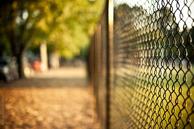 A fence by an alleyway in a park by Jakob for Stocksy United