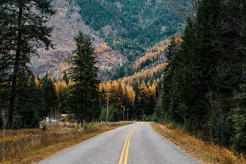 A paved country road in the mountains of Washington.  by Justin Mullet for Stocksy United