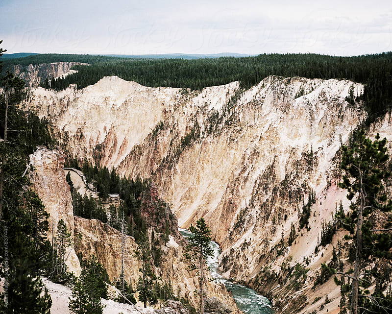 Yellowstone National Park by Adam Naples for Stocksy United