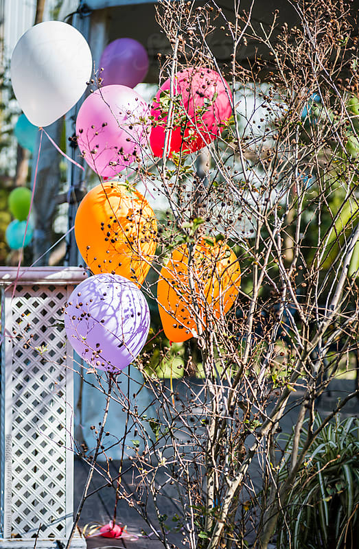 Colorful balloons floating at yard for celebration by Lawren Lu for Stocksy United