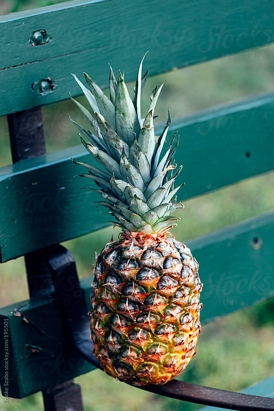 Fresh pineapple on the bench by Emoke Szabo for Stocksy United