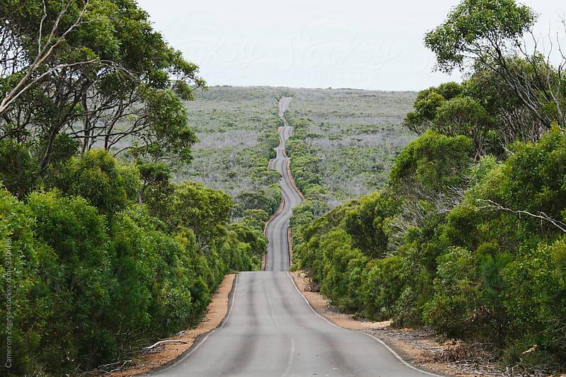 winding road on kangaroo island by Cameron Zegers for Stocksy United