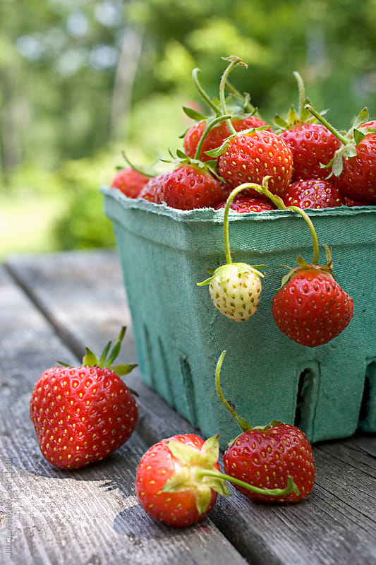 Fresh Local Strawberries by Jill Chen for Stocksy United