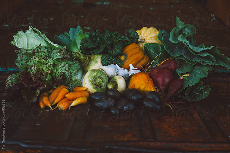 Bounty of farm fresh vegetables on orange truck bed by Tari Gunstone for Stocksy United
