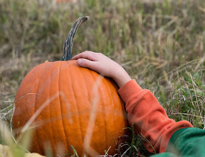 Child lies in a field with his arm resting on a pumpkin by Cara Dolan for Stocksy United