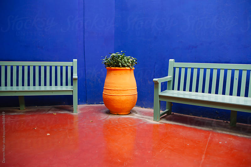 Terracotta planter with plant between two park benches against a blue wall and red floor. by Darren Muir for Stocksy United