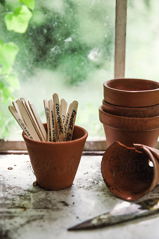 Plant markers and pots in front of a greenhouse window. by Helen Rushbrook for Stocksy United