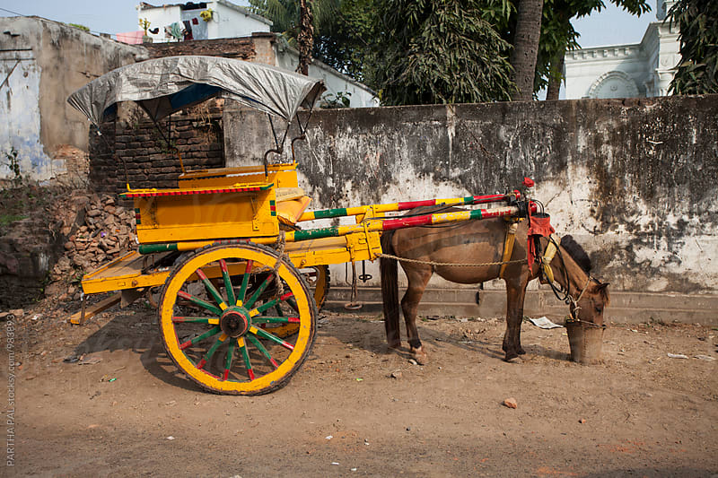 A horse driven cart by PARTHA PAL for Stocksy United