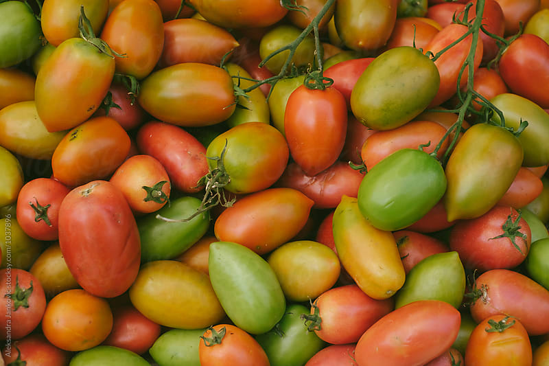 Colorful Organic Tomatoes by Aleksandra Jankovic for Stocksy United