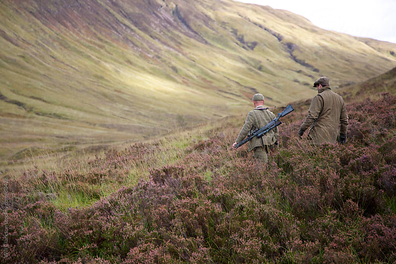 A stalker and his client walk through a valley full of heather by Will Clarkson for Stocksy United