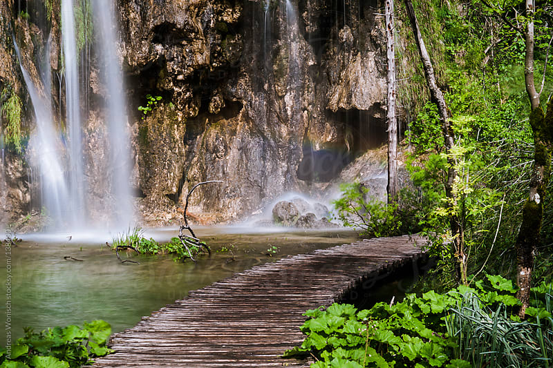 Jetty through Waterfall Paradise by Andreas Wonisch for Stocksy United