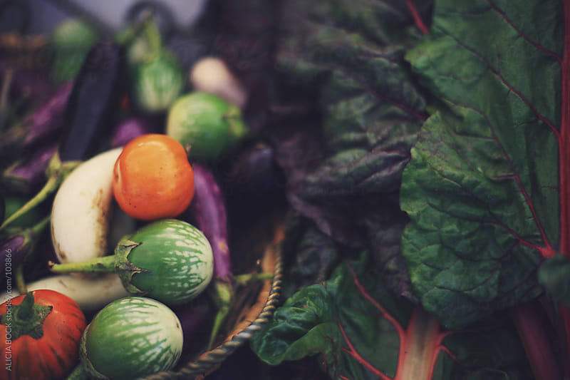 Fresh Vegetables from the Farmer's Market by ALICIA BOCK for Stocksy United