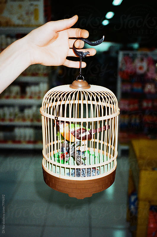 Man holding toy cage  by Dina Lun for Stocksy United