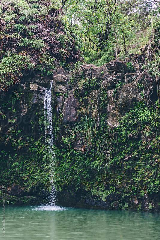 Pua'a Ka'a Falls by Jen Grantham for Stocksy United
