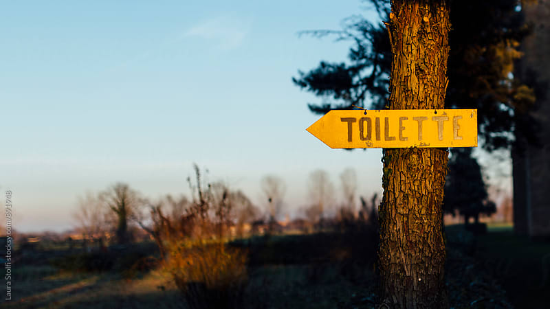 Toilette arrow sign hanging on tree in sunset light by Laura Stolfi for Stocksy United
