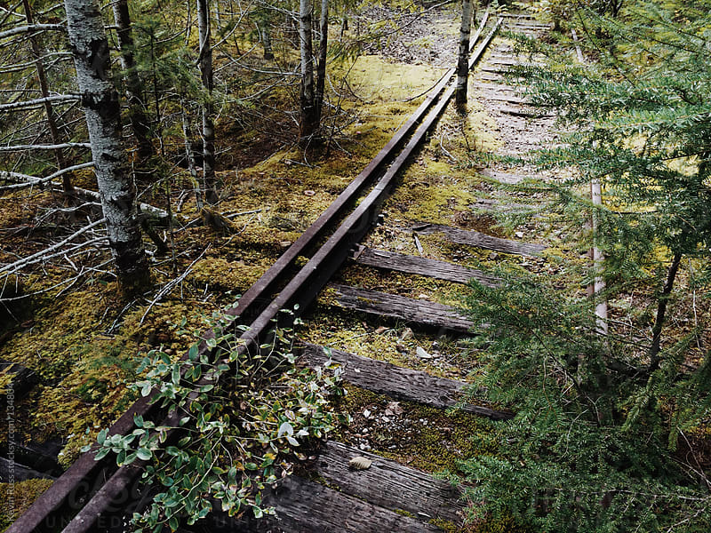 Overgrown Train Tracks by Kevin Russ for Stocksy United
