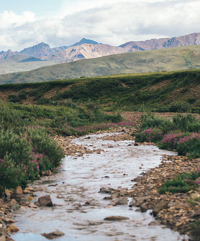 Denali River by Jake Elko for Stocksy United