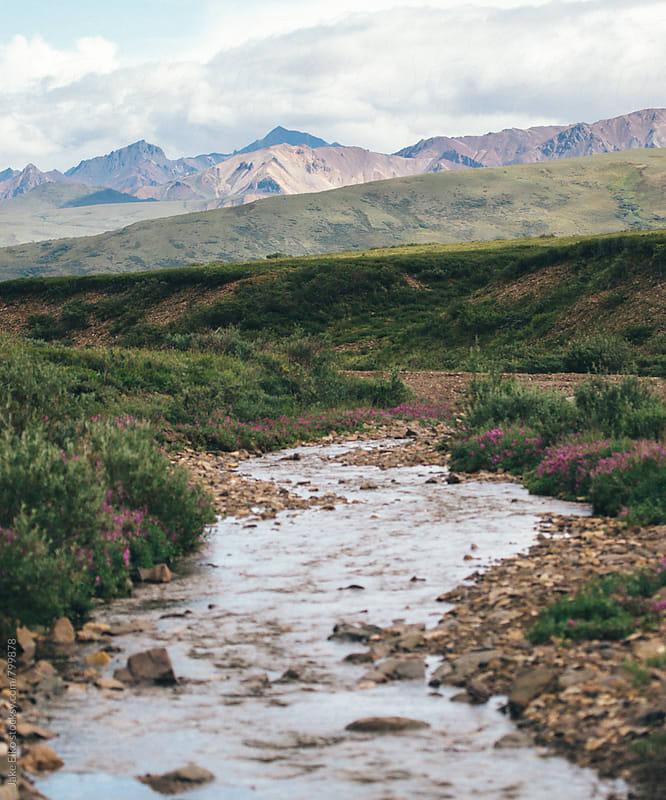 Denali River by Jake Elko for Stocksy United
