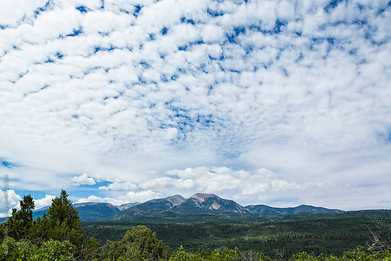 Puffy white clouds over a Utah forest valley by Adam Nixon for Stocksy United
