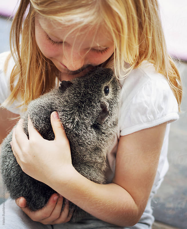 A little girl and her pet guinea pig by Helen Rushbrook for Stocksy United