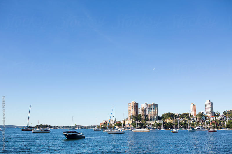 Yachts moored in a Sydney harbour by Reece McMillan for Stocksy United