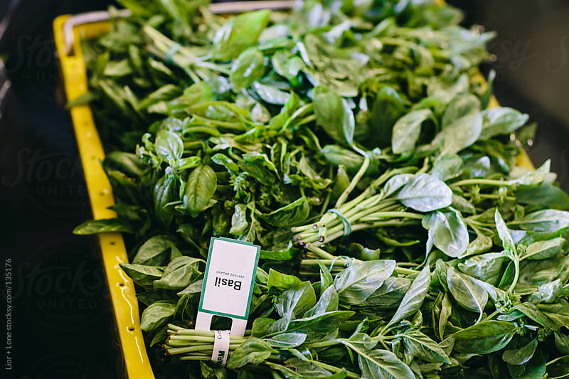 Plastic crate full of fresh organic basil by Lior + Lone for Stocksy United