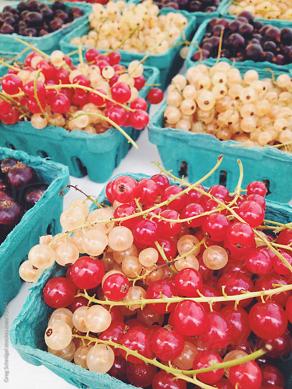 Fresh currants at a vegetable market by Greg Schmigel for Stocksy United