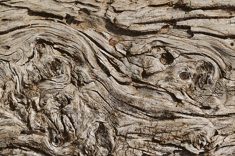 Old Wood Background by VICTOR TORRES for Stocksy United