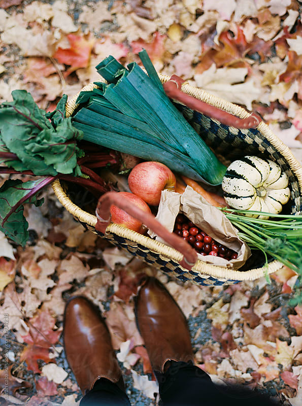 Basket of Vegetables by sarah cabalka for Stocksy United