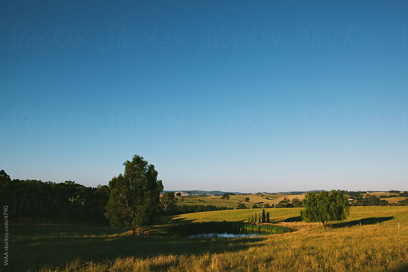 Gippsland Landscape by WAA for Stocksy United