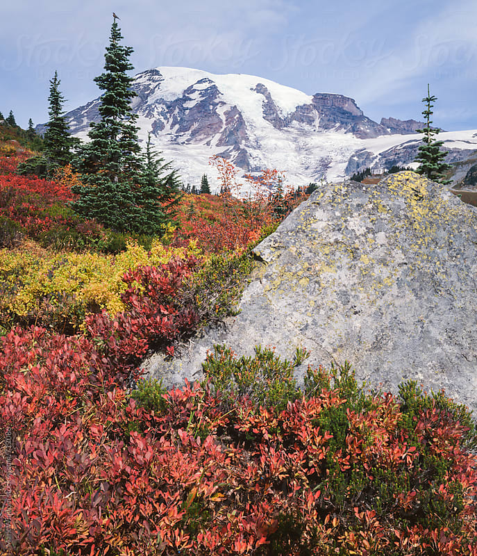 Mountain and Autumn foliage by Mark Windom for Stocksy United