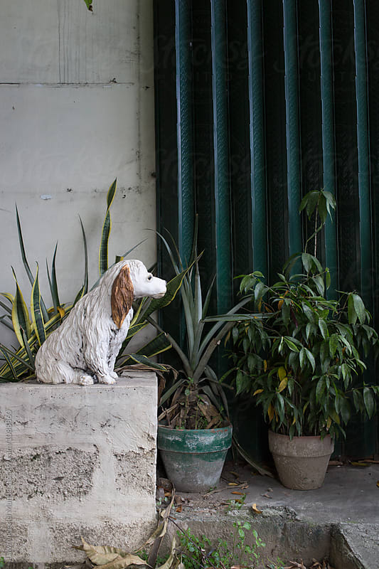Lonely looking dog statue on a plant box.  by Lawrence del Mundo for Stocksy United