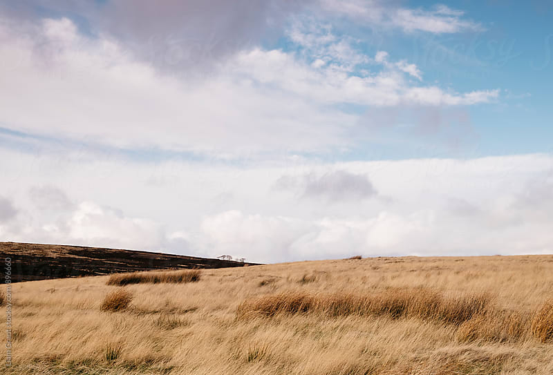 Sunlight over moorland. Derbyshire, UK. by Liam Grant for Stocksy United
